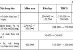 TP.HCM quy định khung mức thu thỏa thuận để chống lạm thu