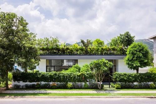 """những ngôi nhà """"vườn cây trên mái"""", vườn cây trên sân thượng, nhà đá ở Việt Nam"""