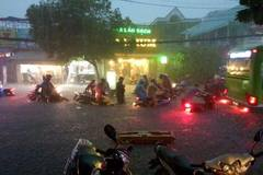 Sài Gòn ngập, y tá bắt lươn trong bệnh viện