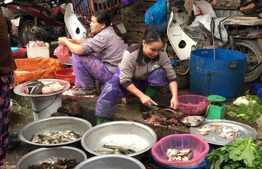 Dân sành Hà thành: Vét bong bóng cá khắp chợ về nhậu