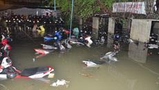 Gần 1.400 ô tô, xe máy bị nhấn chìm trong trận mưa 'lịch sử'
