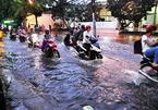 Sài Gòn lại mưa ngập, cây xanh đổ đè ô tô