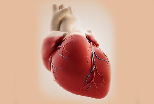 nhồi máu cơ tim, bệnh tim mạch