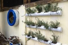 Sinh viên Hà thành biến bãi rác thành vườn hoa đẹp ngỡ ngàng