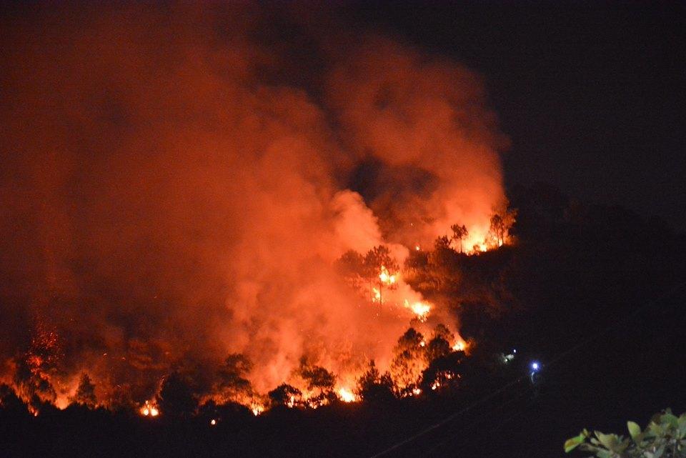 Cháy rừng ở hạ long, cháy rừng ở Quảng Ninh, cháy rừng