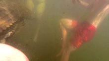 Cá sấu 'khủng' ẩn dưới sông lao vào một gia đình đang tắm