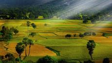 Những điểm cứ đến là có ảnh đẹp ở An Giang