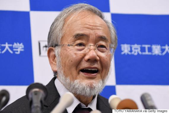 giải Nobel, Nobel Y học 2016, Yoshinori Ohsumi