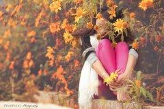 """Điểm """"săn"""" hoa dã quỳ tuyệt đẹp vào tháng 10"""