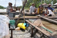 Sài Gòn ngập lụt, ĐBSCL 'đói' nước