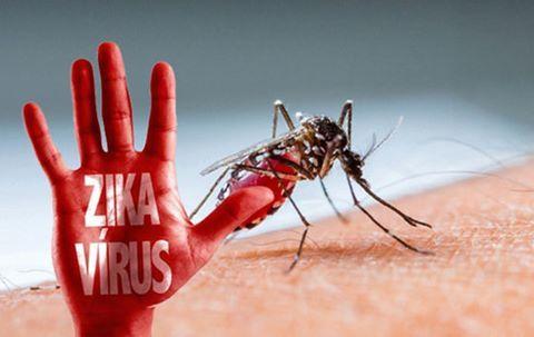 2 phụ nữ trẻ nhiễm Zika, 1 người mang bầu