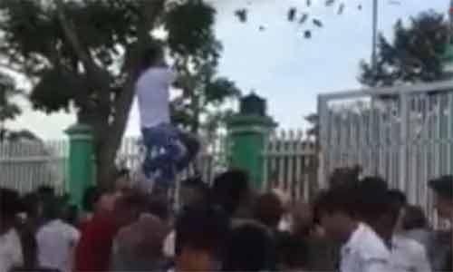 Đại gia Việt rải tiền để mua vui