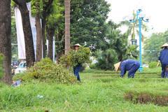 Hà Nội sẽ cắt cỏ theo 3 cấp độ