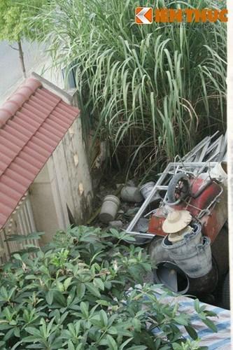 khu đô thị Văn Phú, biệt thự thành nơi trồng rau nuôi gà, biệt thự bỏ hoang
