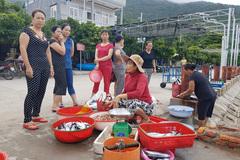 Ra Cù Lao Chàm thưởng thức hải sản tươi sống