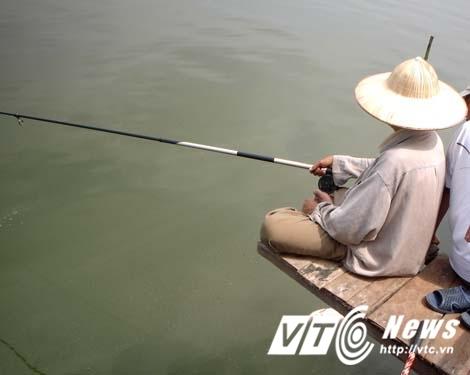 'Thủy quái' Hồ Tây đã tuyệt chủng