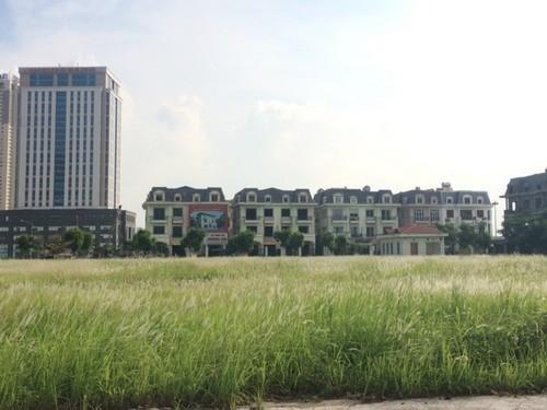 Chuyện lạ Hà Nội: Thị trường tăng tốc, đại gia 'ôm' đất vàng 'ngồi im'