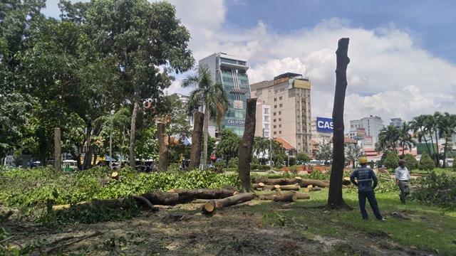 Đốn hạ 24 cây xanh thi công nhà ga metro ở Sài Gòn