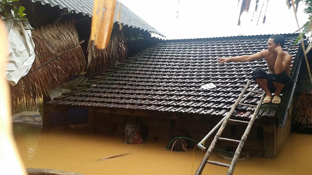 lũ lụt miền trung, lũ miền trung, mưa lũ miền trung, xả lũ, đập thủy điện Hố Hô, Chủ tịch Hà Tĩnh