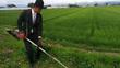 Xôn xao chàng nông dân mặc vest lội ruộng cắt cỏ