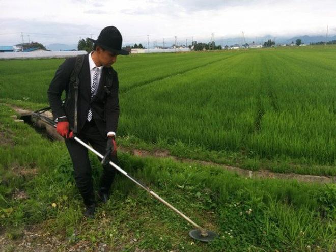 nông dân nhật bản, nông dân nhật bản mặc vest đi cắt cỏ, nông nghiệp truyền thống nhật bản, nông nghiệp truyền thống