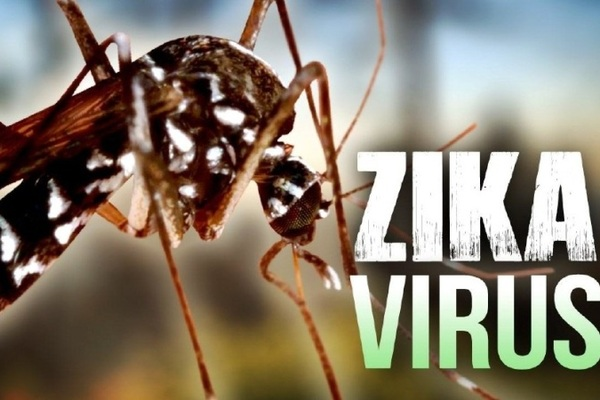 TP.HCM công bố dịch Zika