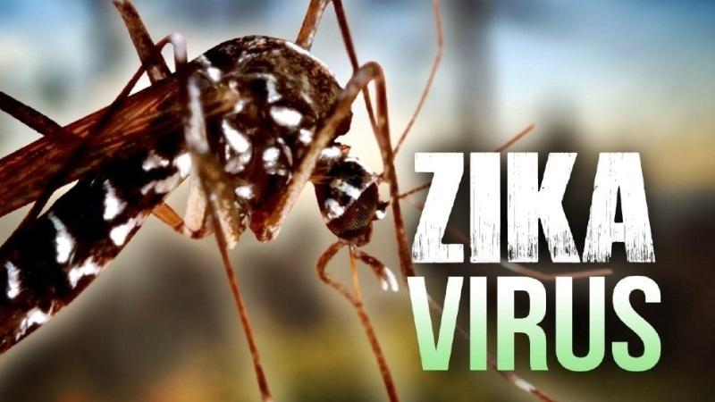 công bố dịch Zika, TPHCM, tỷ lệ mắc bệnh, sơ sinh