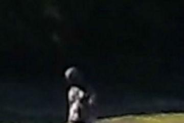 Công bố bức ảnh người ngoài hành tinh gây xôn xao