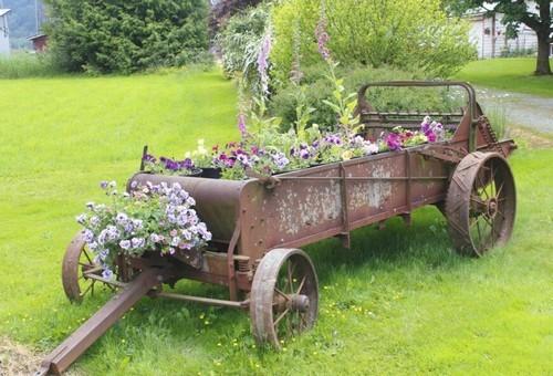 trang trí sân vườn, thiết kế sân vườn, sân vườn đẹp