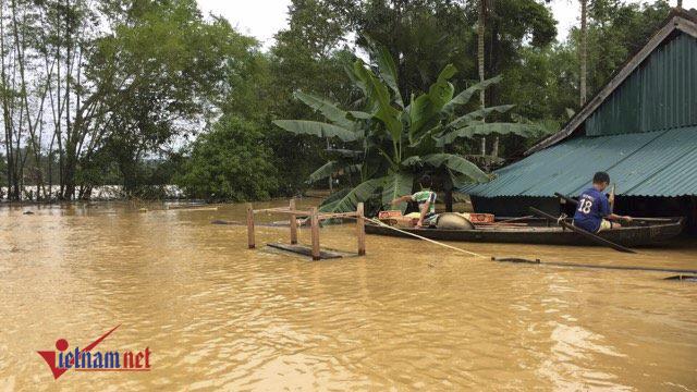 Bộ Nông nghiệp, thành lập tổng cục phòng chống thiên tai, thiên tai bão lụt