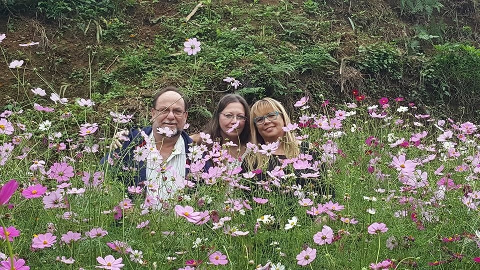 Cánh đồng hoa cúc sao nhái ở 'ngôi làng đẹp nhất Tây Bắc'