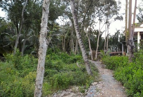 mua nhà đất, dự án khu dân cư Intresco, mua đất nền theo dạng góp vốn