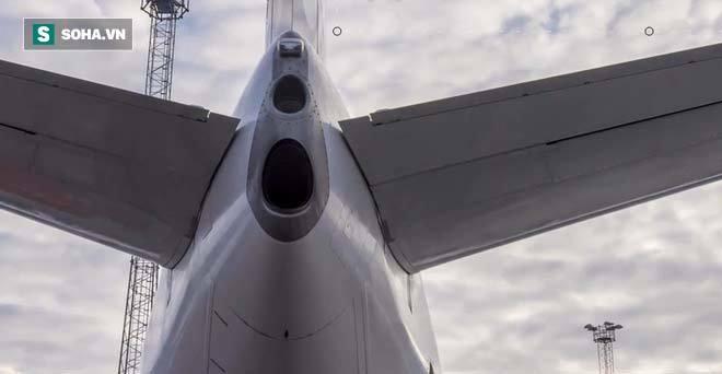 đuôi máy bay thương mại, lỗ nhỏ, chuyến bay, an toàn bay, máy bay, hàng không hành khách, phi công, tiếp viên