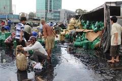 Những vụ 'hôi của' khiến hình ảnh người Việt trở nên xấu xí