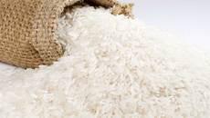 Trung Quốc 'chê', gạo Việt đắt khách Châu Phi