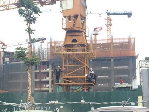 sập cần cẩu, sập giàn giáo, an toàn xây dựng, tai nạn lao động, công trình xây dựng