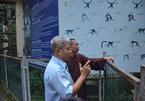 Sư thầy từ miền Tây lên Sài Gòn xin nhận lại chim khổng tước