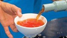 Chuyên gia nước ngoài tham mưu về chất lượng nước mắm