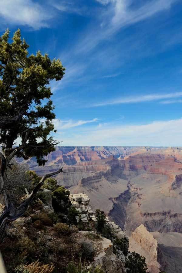 du lịch Mỹ, Grand Canyon, San Francisco