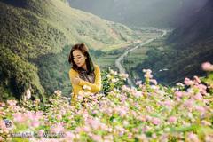Tháng 10, 11 về: Đi qua những mùa hoa thân thương!