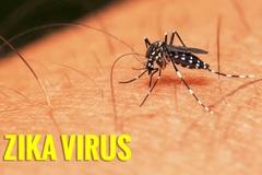 17 người ở Sài Gòn nhiễm virus Zika