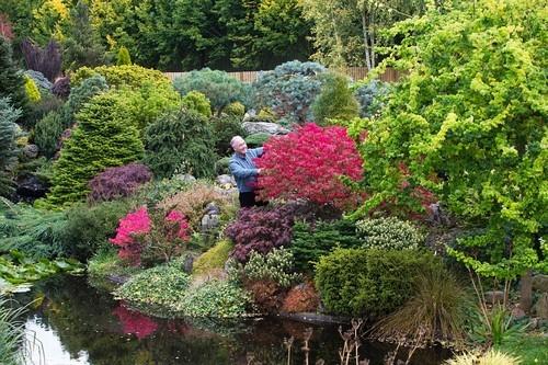 20161102160523 lam vuon 1 Bãi cỏ trống thành khu vườn đẹp như cổ tích đã tiêu tốn 25 năm của gia chủ