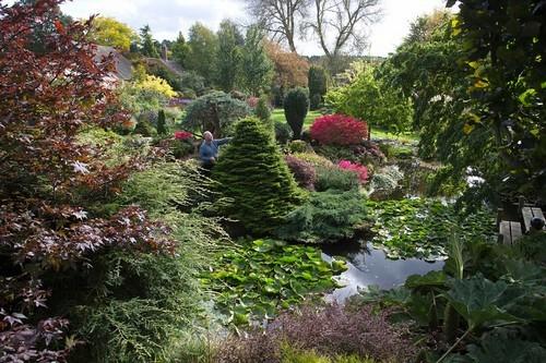 20161102160523 lam vuon 6 Bãi cỏ trống thành khu vườn đẹp như cổ tích đã tiêu tốn 25 năm của gia chủ