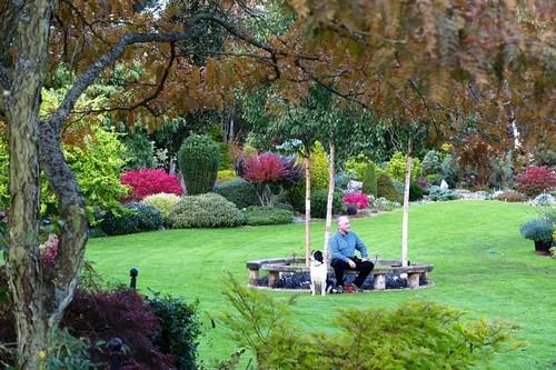 20161102160523 lam vuon 7 Bãi cỏ trống thành khu vườn đẹp như cổ tích đã tiêu tốn 25 năm của gia chủ