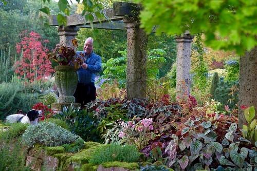 20161102160523 lam vuon 8 Bãi cỏ trống thành khu vườn đẹp như cổ tích đã tiêu tốn 25 năm của gia chủ