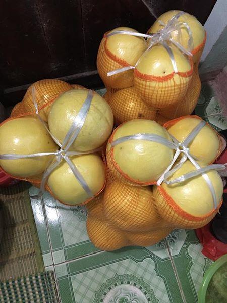 bưởi vàng óng, bưởi lạ, bưởi lạ ở chợ Hà Nội, bưởi Việt Nam, bưởi Tàu, bưởi Trung Quốc