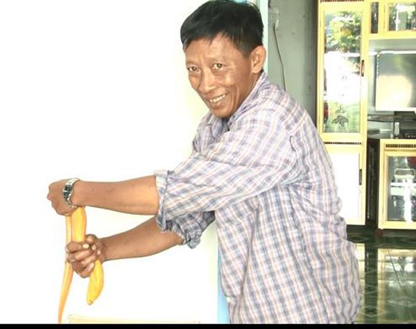 Nông dân miền Tây bắt được lươn vàng nặng gần 1kg