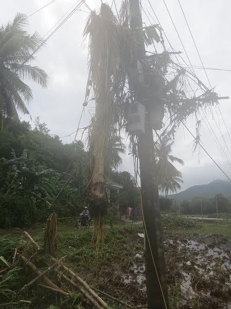 mưa lũ miền Trung, lũ lụt miền trung, phú yên, phú yên xác xơ sau lũ, phú yên cầu cứu thủ tướng, gạo cứu đói