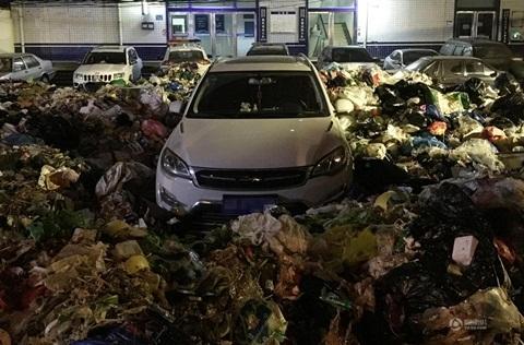 Đỗ xe không đúng chỗ, tài xế, ô tô, vứt rác, bãi rác, lái xe, say rượu, bị phạt, đi xe