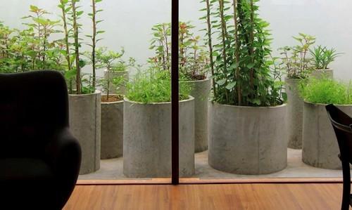 thiết kế nhà, nhà đẹp, nhà vườn độc đáo của người Việt